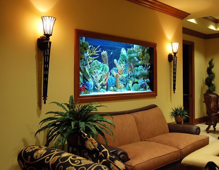 Custom aquariums ideas - Decorative fish tanks for living rooms ...