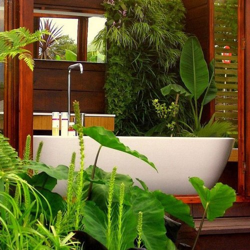 Indoor gardening design for beginners - Nice indoor plants ...