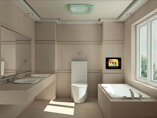 luxurious-bathroom-tv