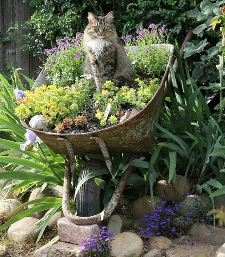 Use Unusual Objects As Planters. You Can Use Nearly Anything As A Planter U2013  Wheelbarrows, Old Dressers, Bird Cages, Used Rowboats, And Even Kitchen  Sinks!