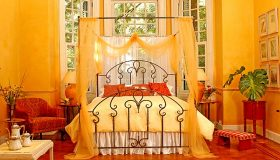 Enjoy in Canopy Beds