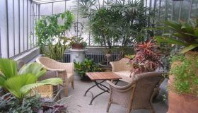 Create a Tropical Area Inside a House