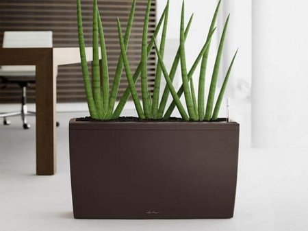 Modern-Indoor-Planters-Collection-from-Lechuza-6