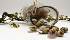 Quail Eggs For Easter Decorations