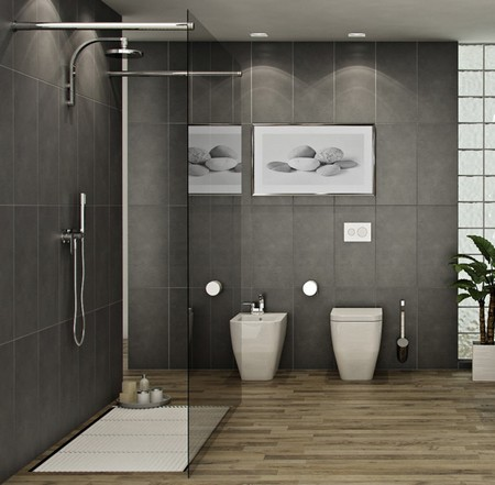 Walk-in-shower1
